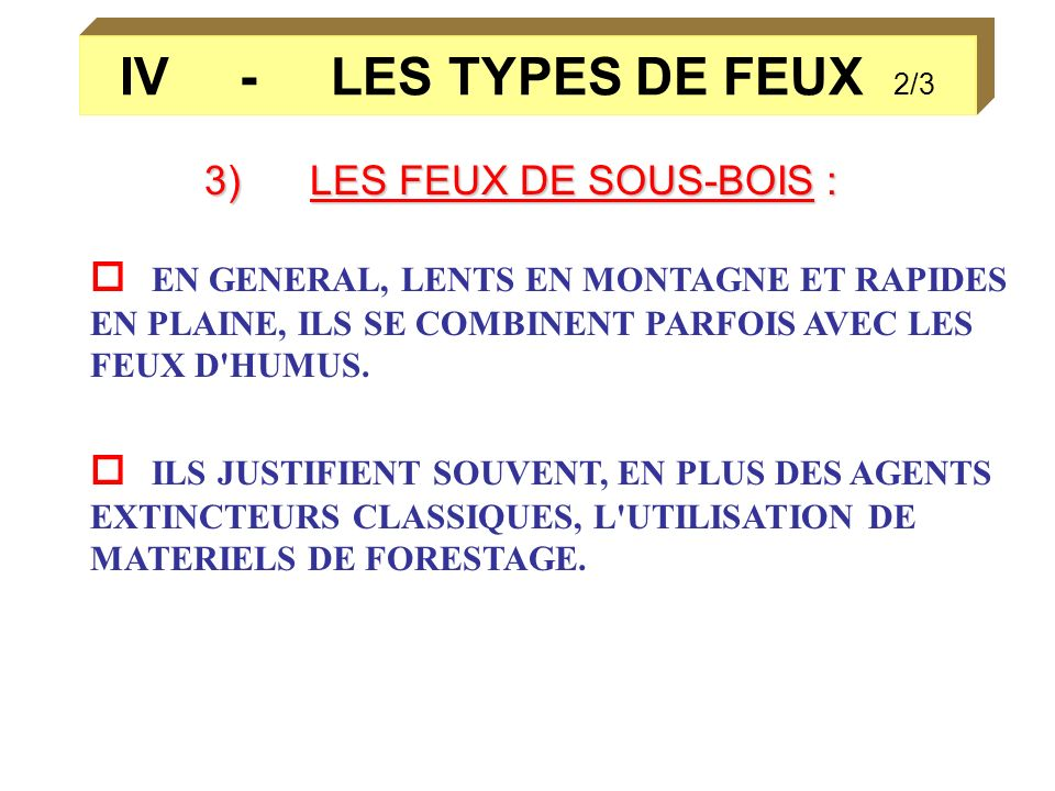 IV - LES TYPES DE FEUX 2/33) LES FEUX DE SOUS-BOIS :