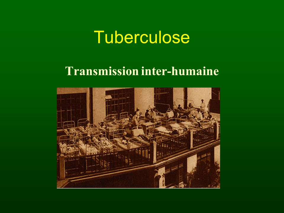 Transmission inter-humaine