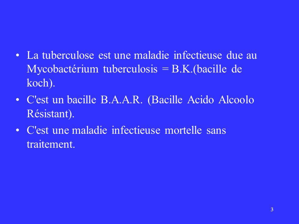 La tuberculose est une maladie infectieuse due au Mycobactérium tuberculosis = B.K.(bacille de koch).