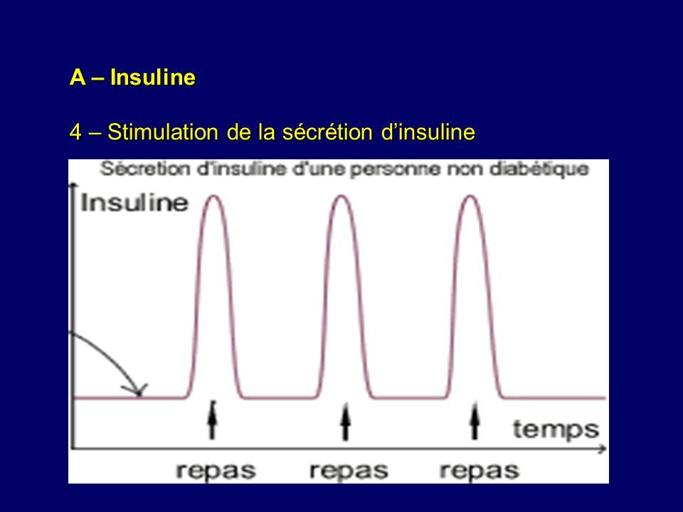 A – Insuline 4 – Stimulation de la sécrétion d'insuline