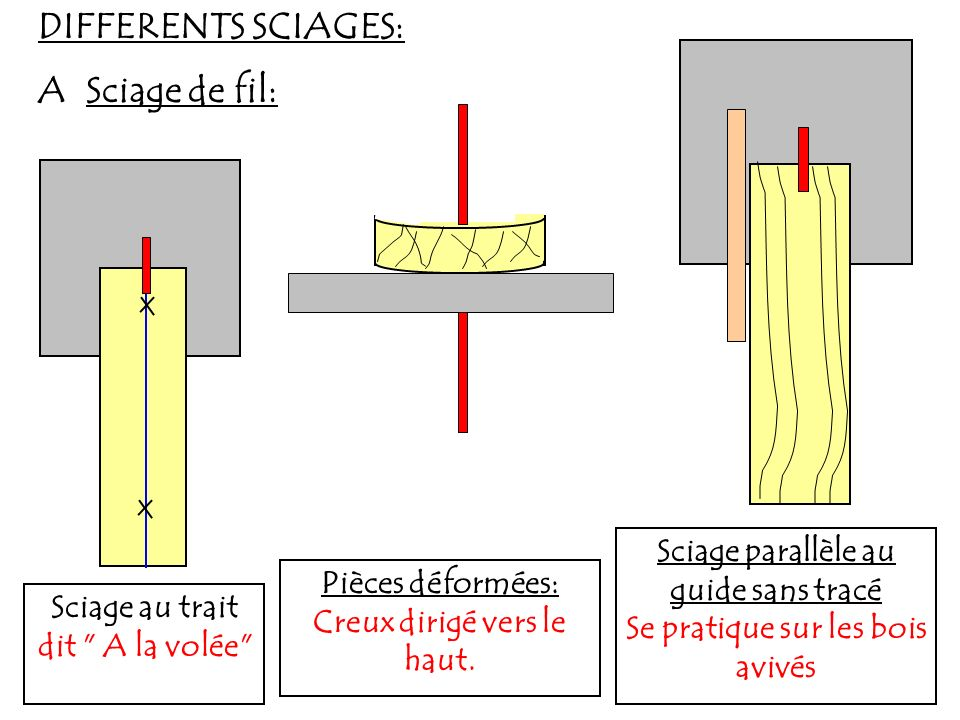 DIFFERENTS SCIAGES: A Sciage de fil: