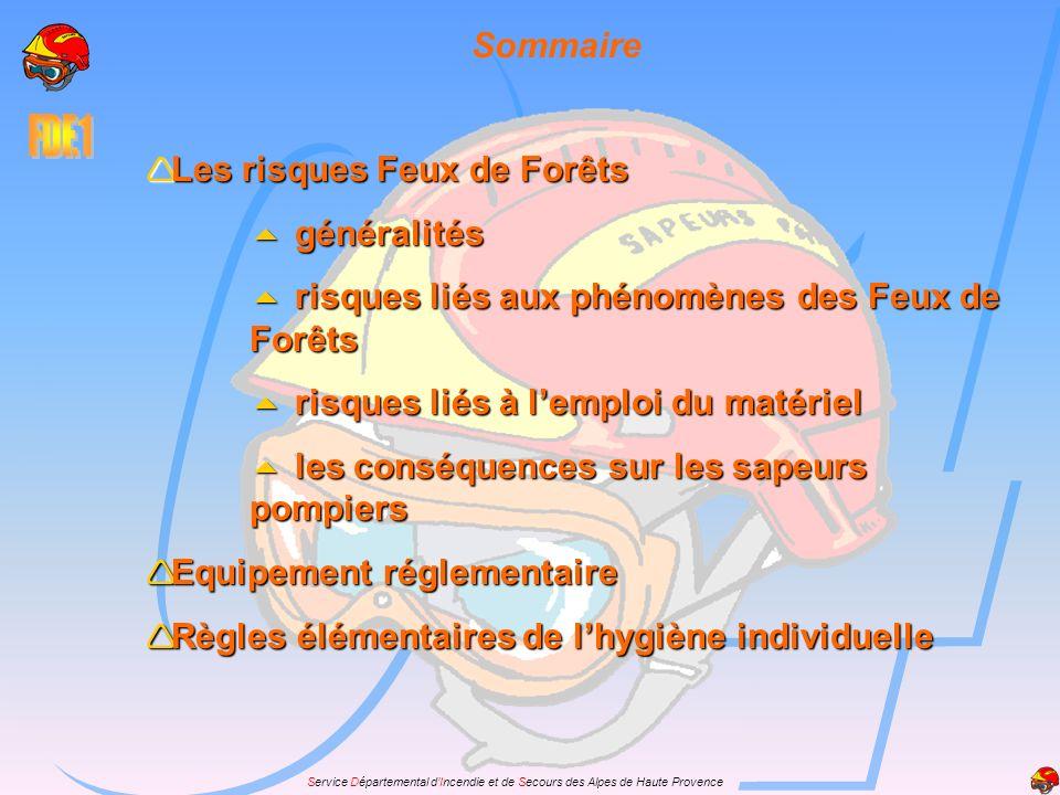 Sommaire Les risques Feux de Forêts. généralités. risques liés aux phénomènes des Feux de Forêts.