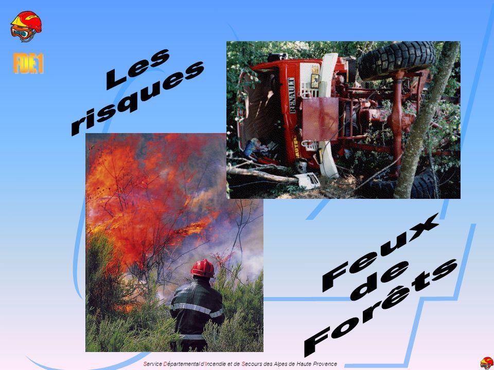 Les risques Feux de Forêts