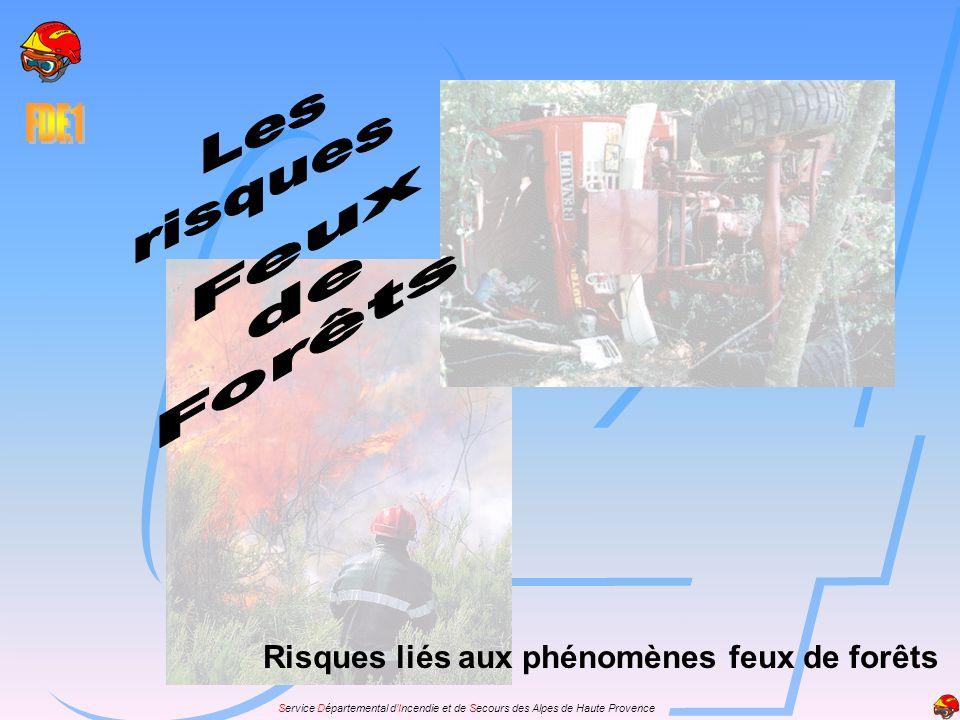Les risques Feux de Forêts Risques liés aux phénomènes feux de forêts