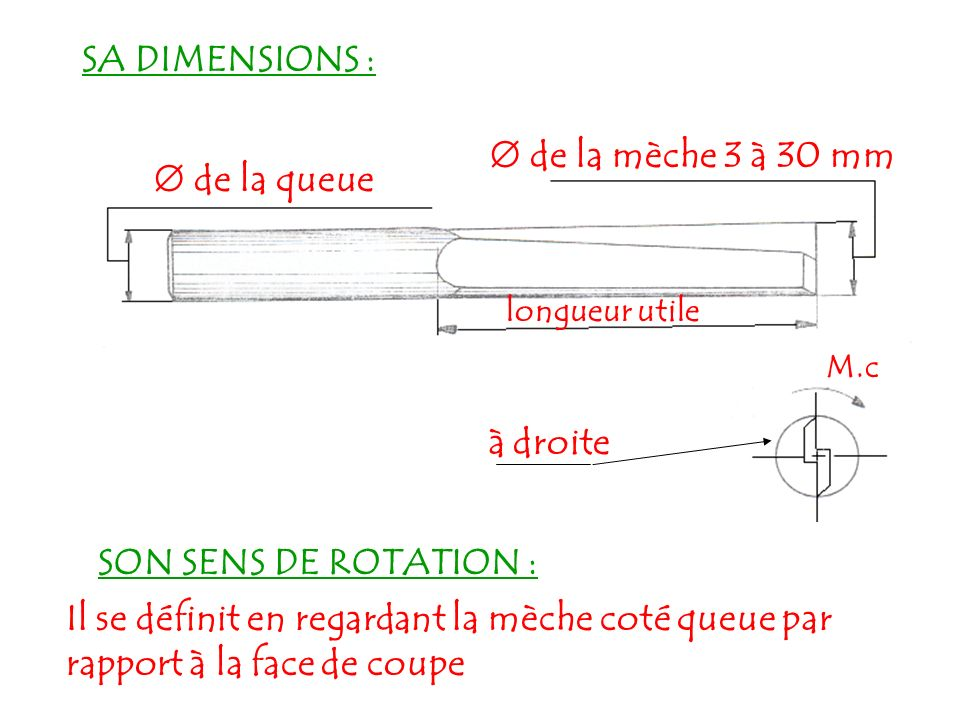 SA DIMENSIONS :  de la mèche 3 à 30 mm  de la queue