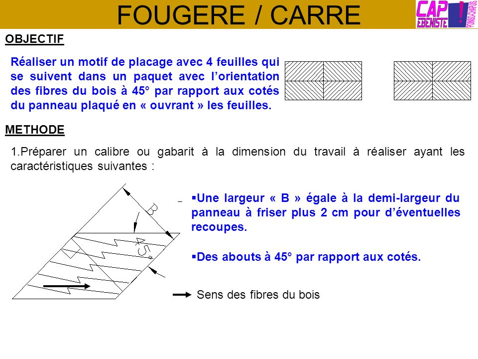 FOUGERE / CARRE OBJECTIF