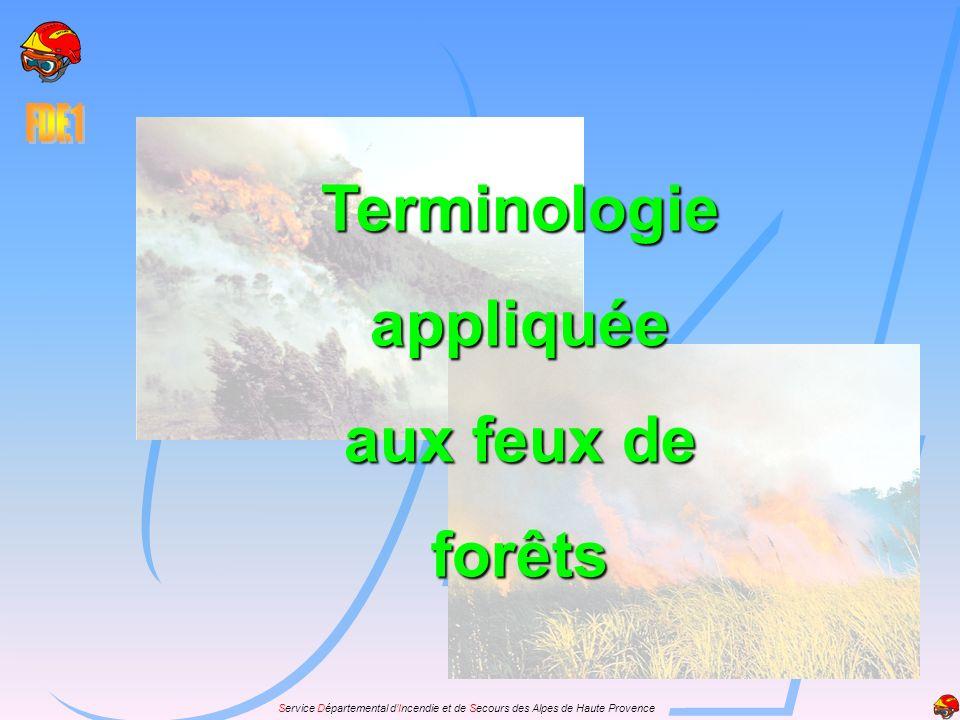 Terminologie appliquée aux feux de forêts
