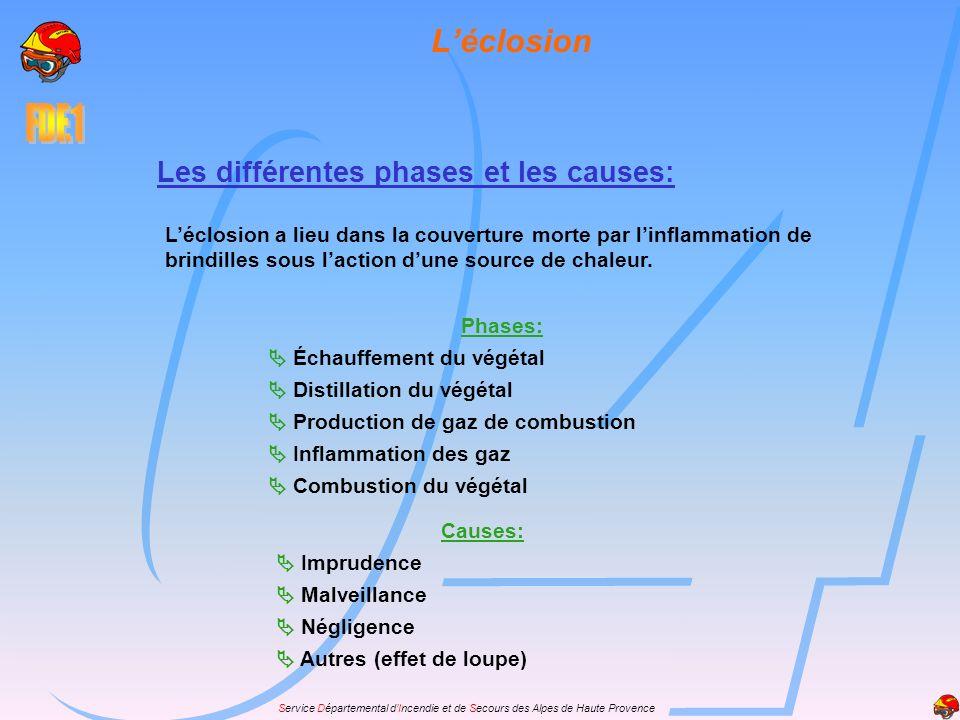 L'éclosion Les différentes phases et les causes: