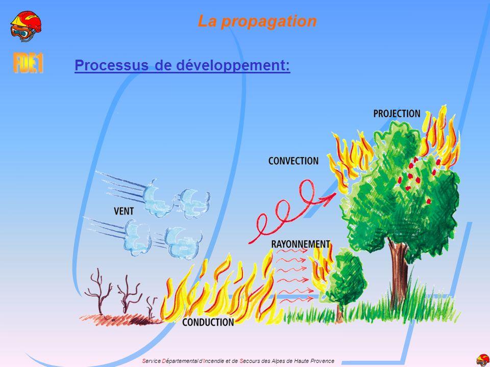 La propagation Processus de développement: