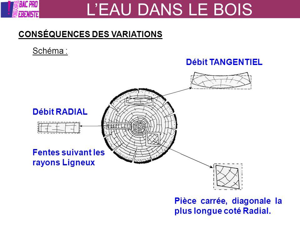 L'EAU DANS LE BOIS CONSÉQUENCES DES VARIATIONS Schéma :