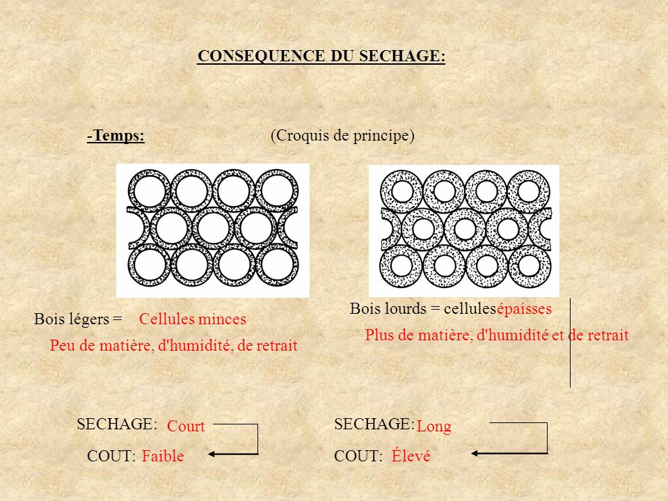 CONSEQUENCE DU SECHAGE: