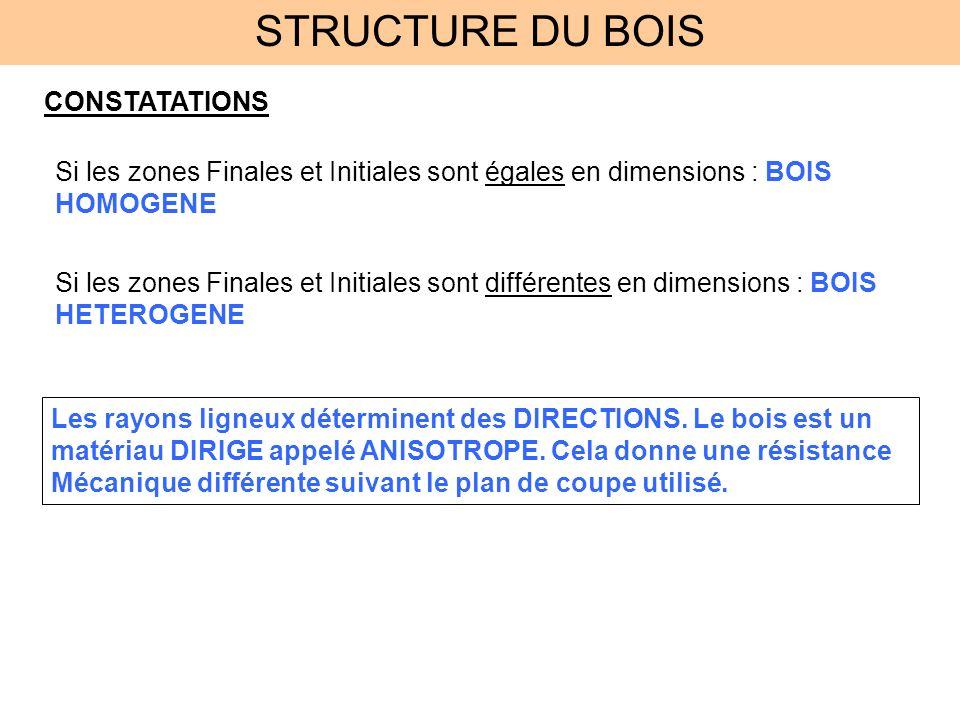 STRUCTURE DU BOIS CONSTATATIONS