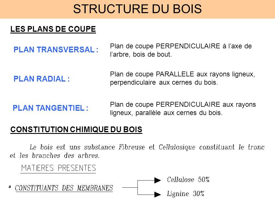 STRUCTURE DU BOIS LES PLANS DE COUPE PLAN TRANSVERSAL : PLAN RADIAL :