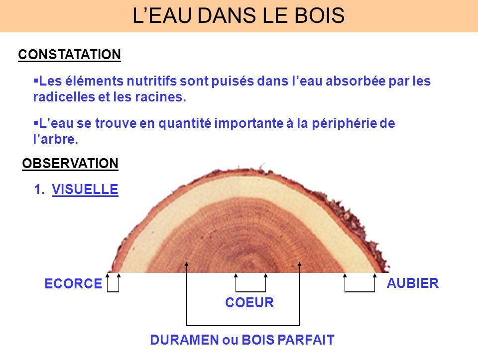 L'EAU DANS LE BOIS CONSTATATION