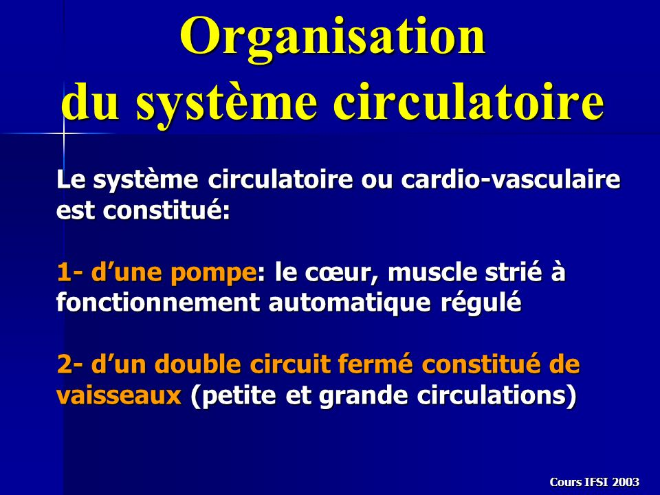 Organisation du système circulatoire