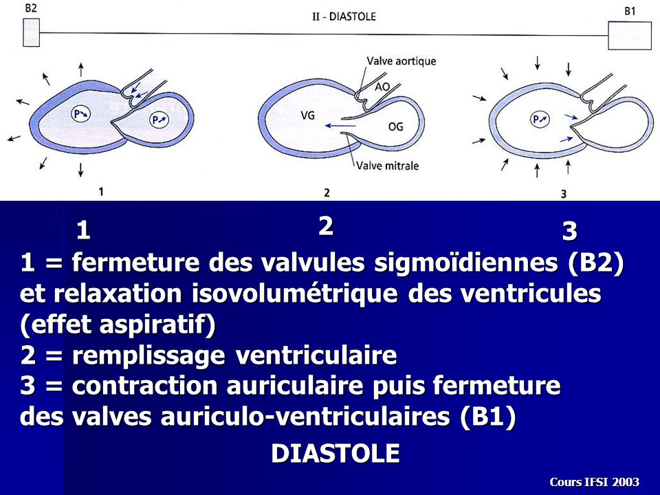 2 = remplissage ventriculaire