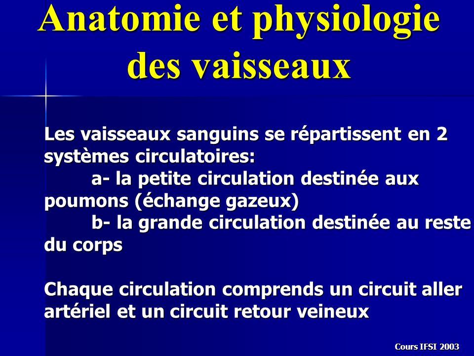Anatomie et physiologie des vaisseaux