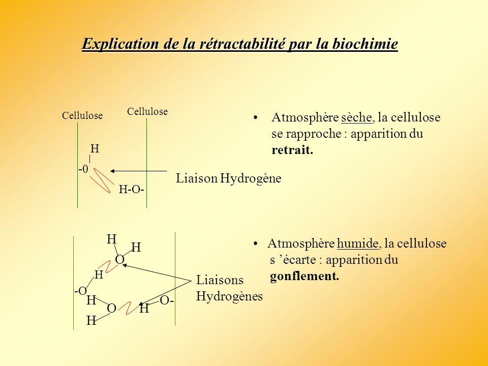 Explication de la rétractabilité par la biochimie
