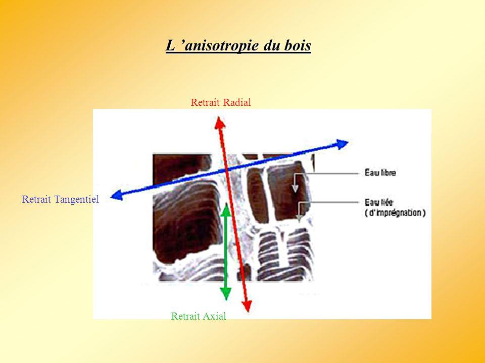 L 'anisotropie du bois Retrait Radial Retrait Tangentiel Retrait Axial