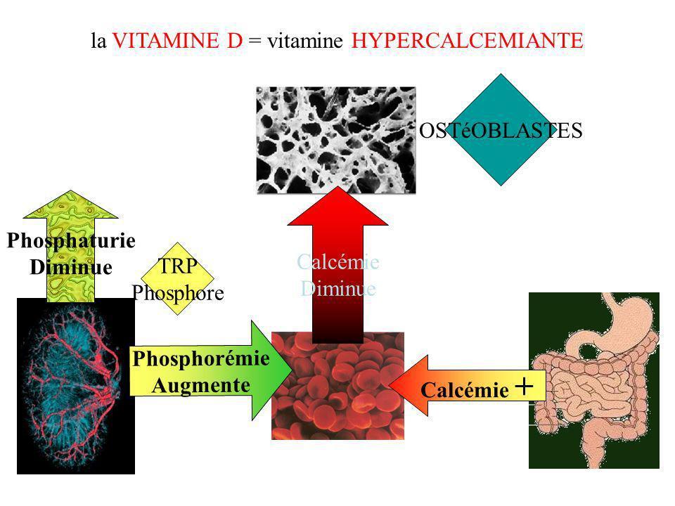 la VITAMINE D = vitamine HYPERCALCEMIANTE