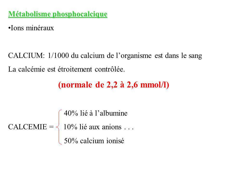 (normale de 2,2 à 2,6 mmol/l) Métabolisme phosphocalcique
