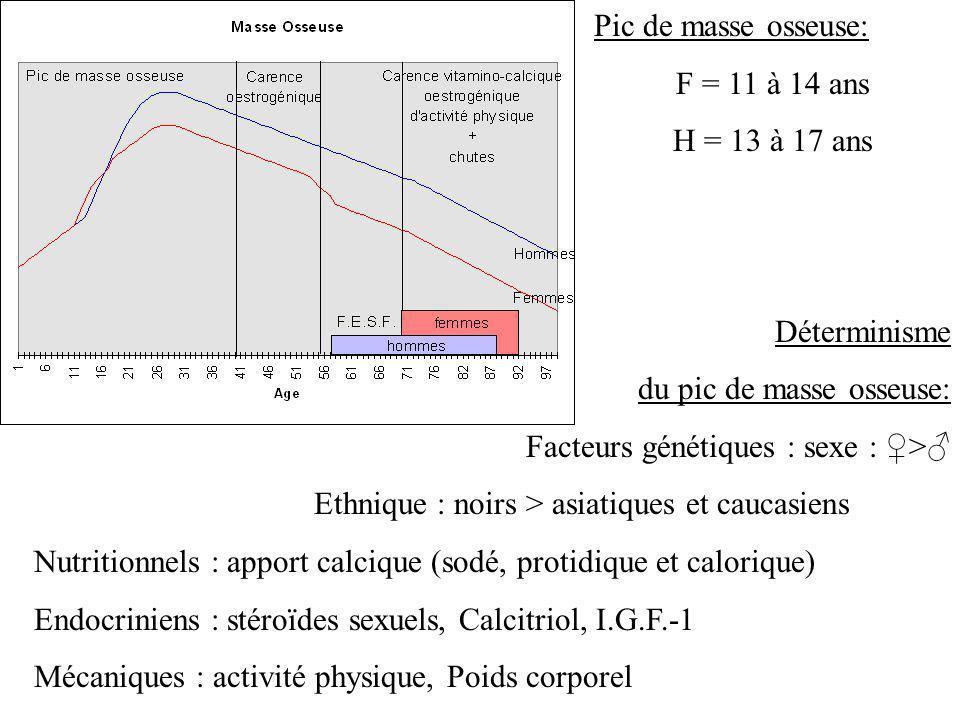 Pic de masse osseuse: F = 11 à 14 ans. H = 13 à 17 ans. Déterminisme. du pic de masse osseuse: Facteurs génétiques : sexe : ♀>♂