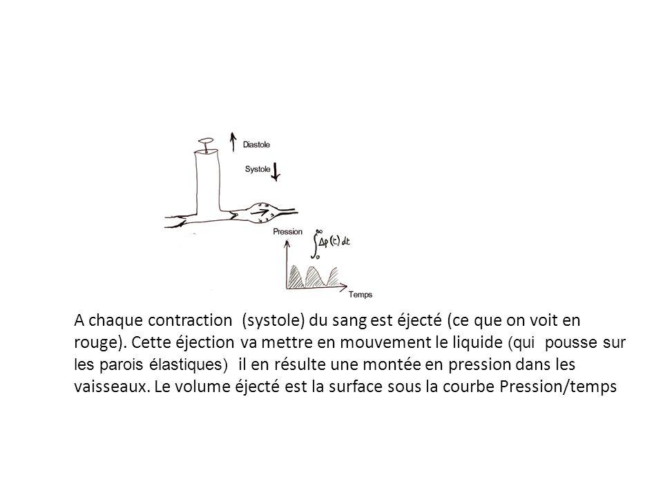 A chaque contraction (systole) du sang est éjecté (ce que on voit en rouge). Cette éjection va mettre en mouvement le liquide (qui pousse sur les parois élastiques) il en résulte une montée en pression dans les vaisseaux. Le volume éjecté est la surface sous la courbe Pression/temps