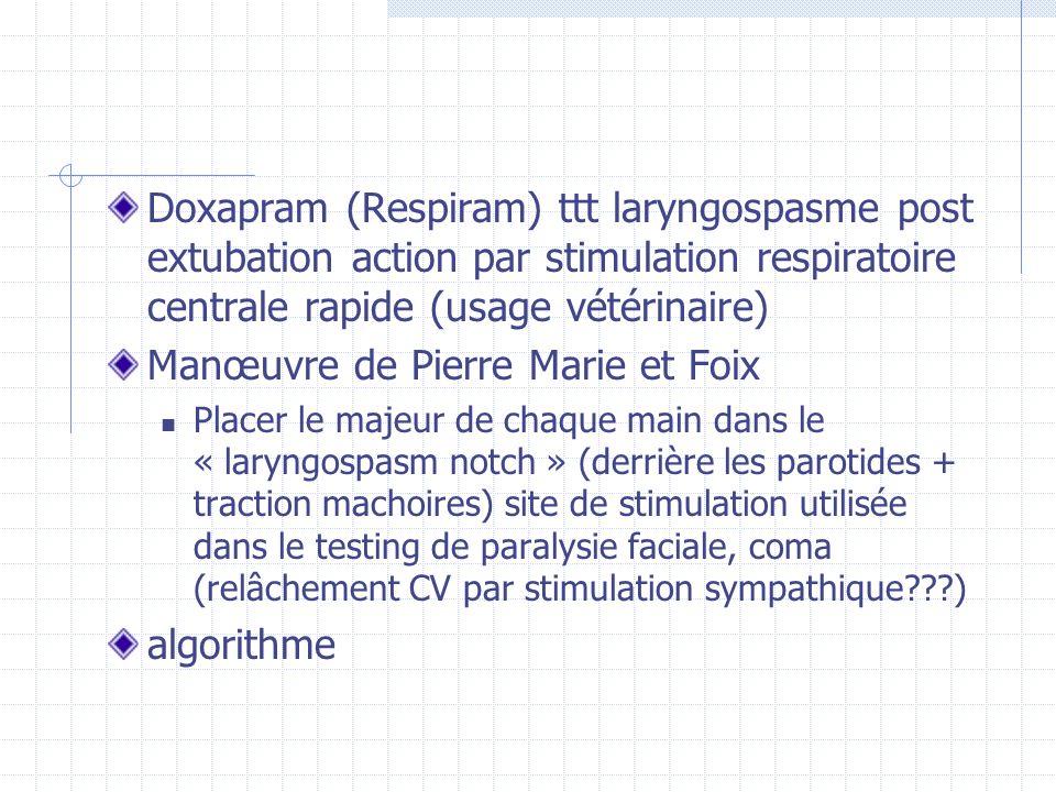 Manœuvre de Pierre Marie et Foix