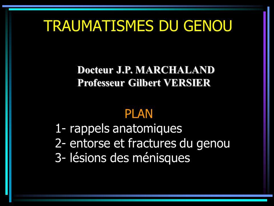 TRAUMATISMES DU GENOU PLAN 1- rappels anatomiques