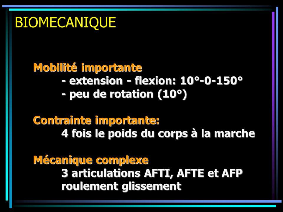 BIOMECANIQUE Mobilité importante - extension - flexion: 10°-0-150°