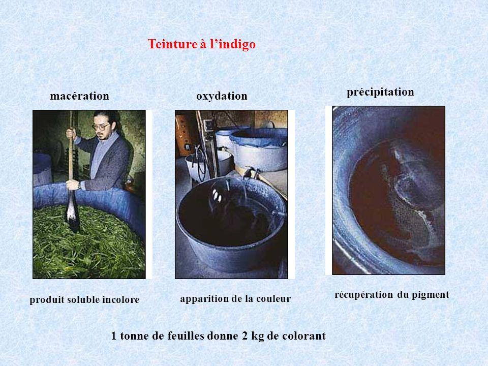 Teinture à l'indigo précipitation macération oxydation