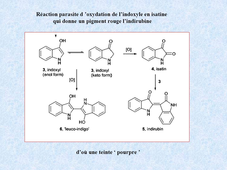 Réaction parasite d 'oxydation de l'indoxyle en isatine