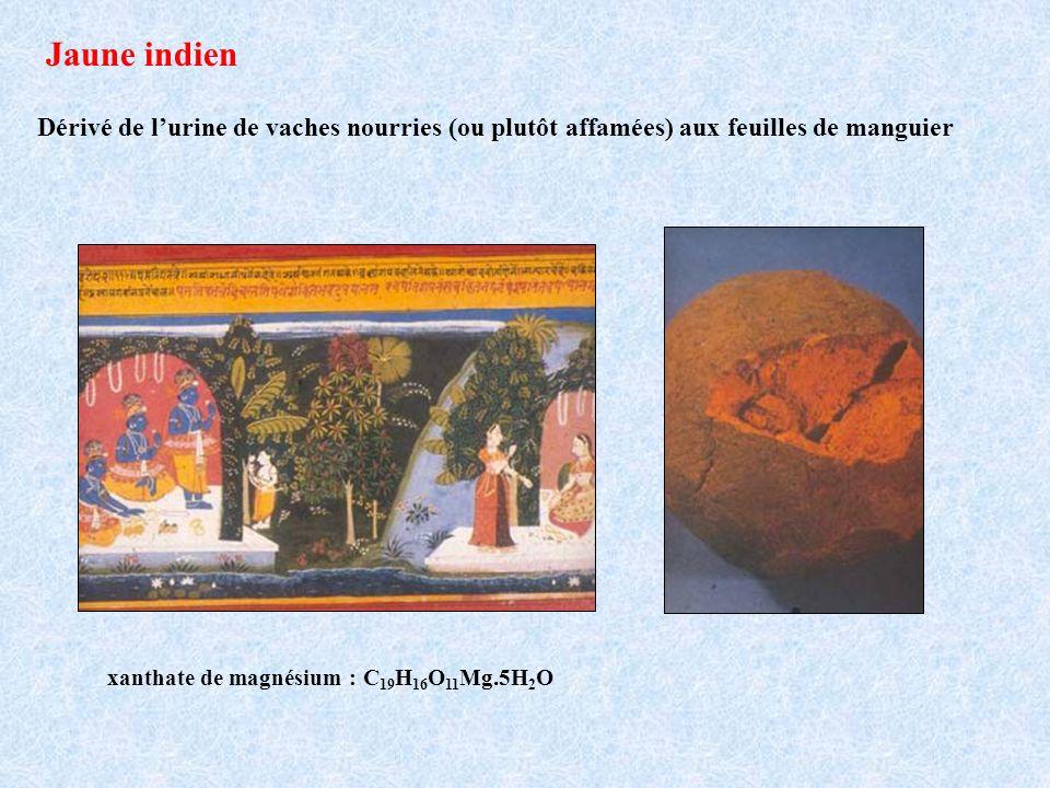 Jaune indien Dérivé de l'urine de vaches nourries (ou plutôt affamées) aux feuilles de manguier.