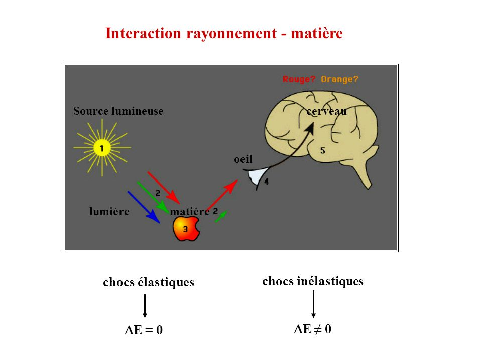 Interaction rayonnement - matière