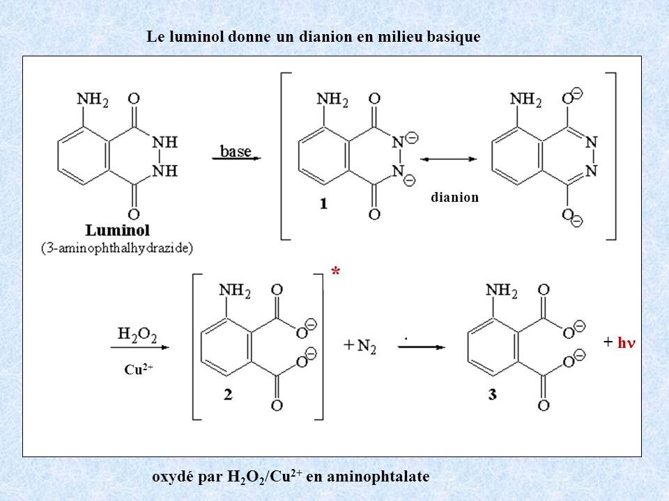 * Le luminol donne un dianion en milieu basique + hn