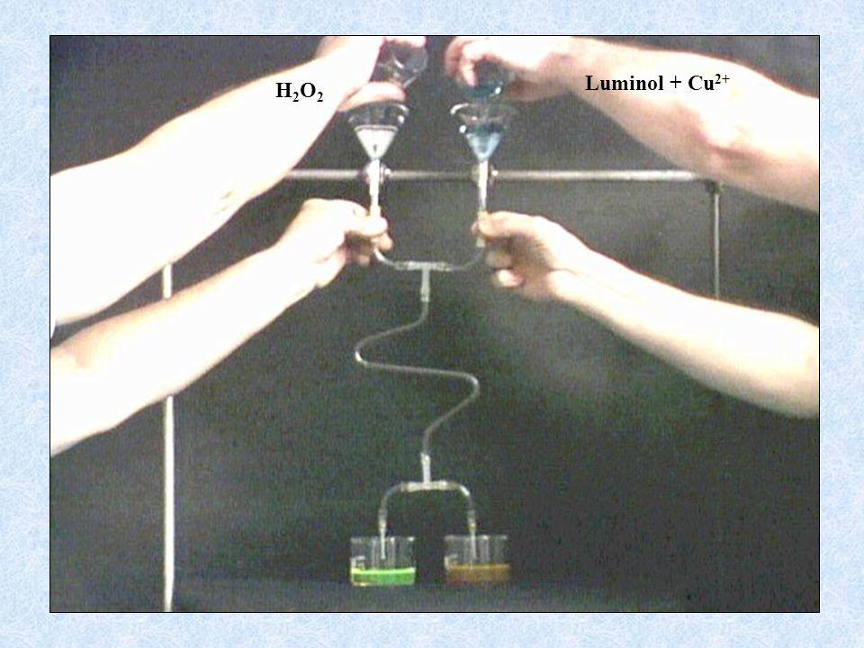 Luminol + Cu2+ H2O2