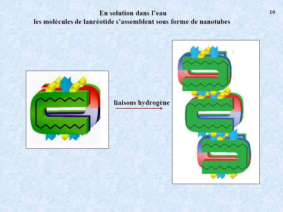 les molécules de lanréotide s'assemblent sous forme de nanotubes