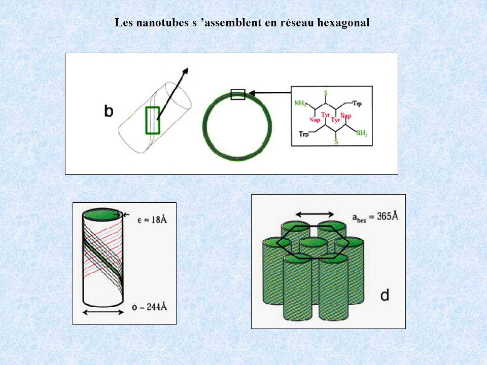 Les nanotubes s 'assemblent en réseau hexagonal