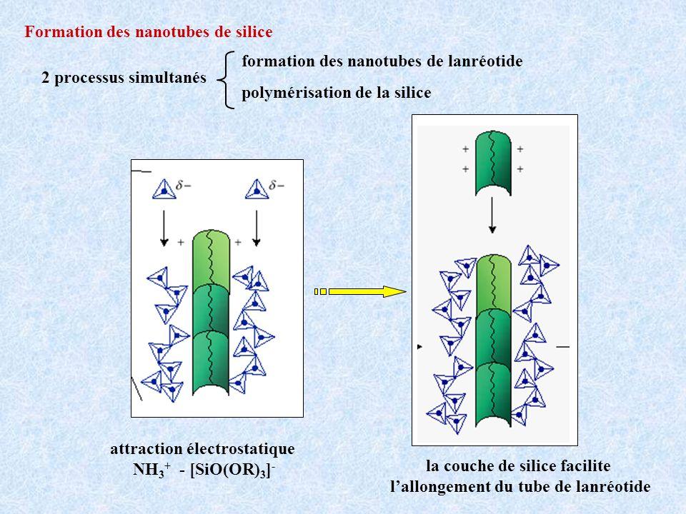 Formation des nanotubes de silice