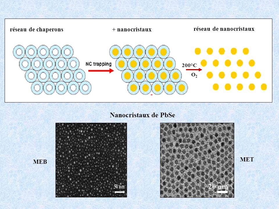 Nanocristaux de PbSe réseau de chaperons + nanocristaux