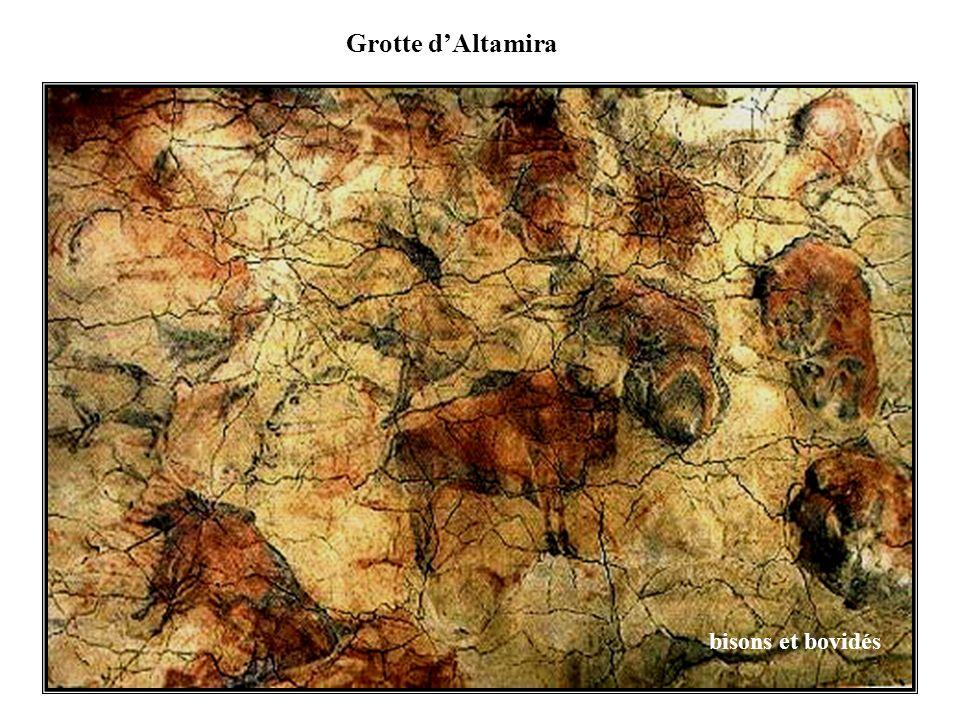 Grotte d'Altamira bisons et bovidés