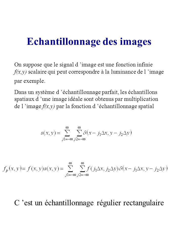 Echantillonnage des images