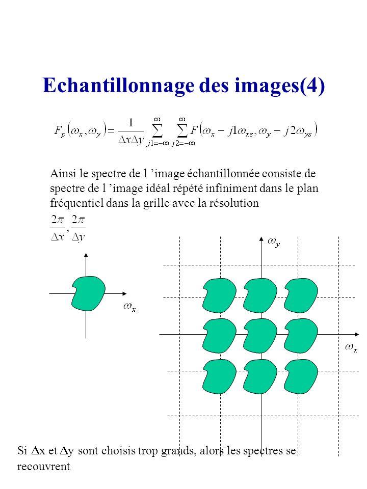 Echantillonnage des images(4)