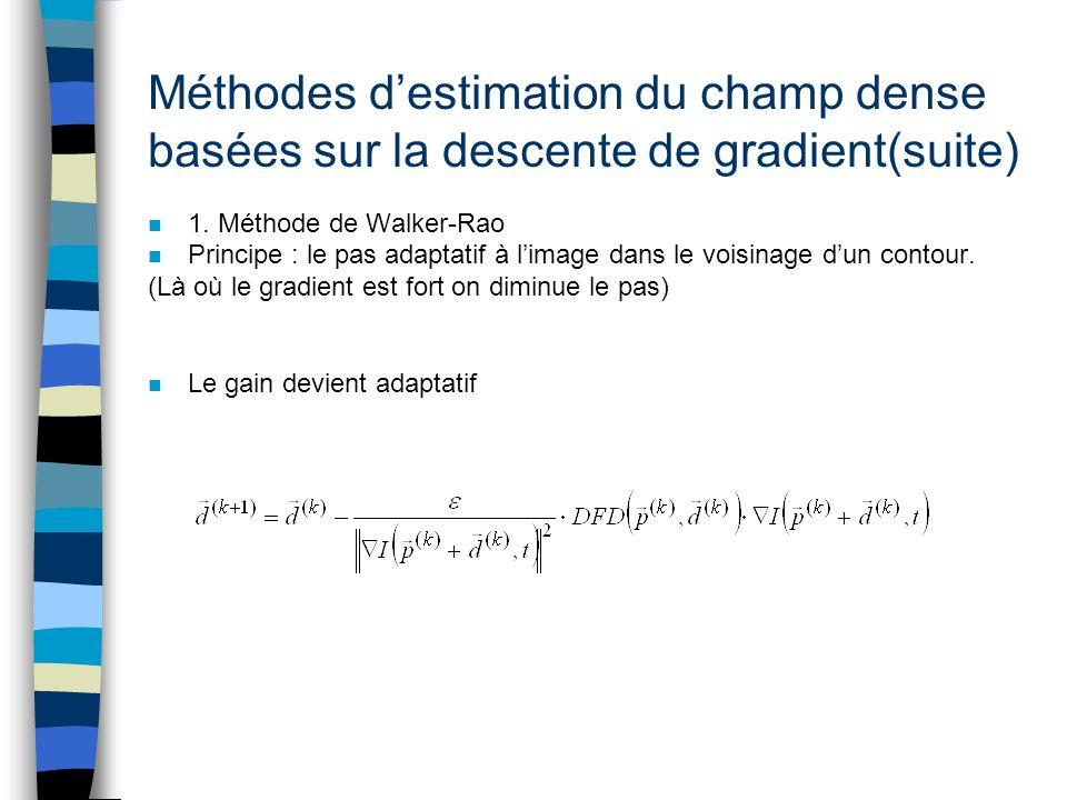 Méthodes d'estimation du champ dense basées sur la descente de gradient(suite)