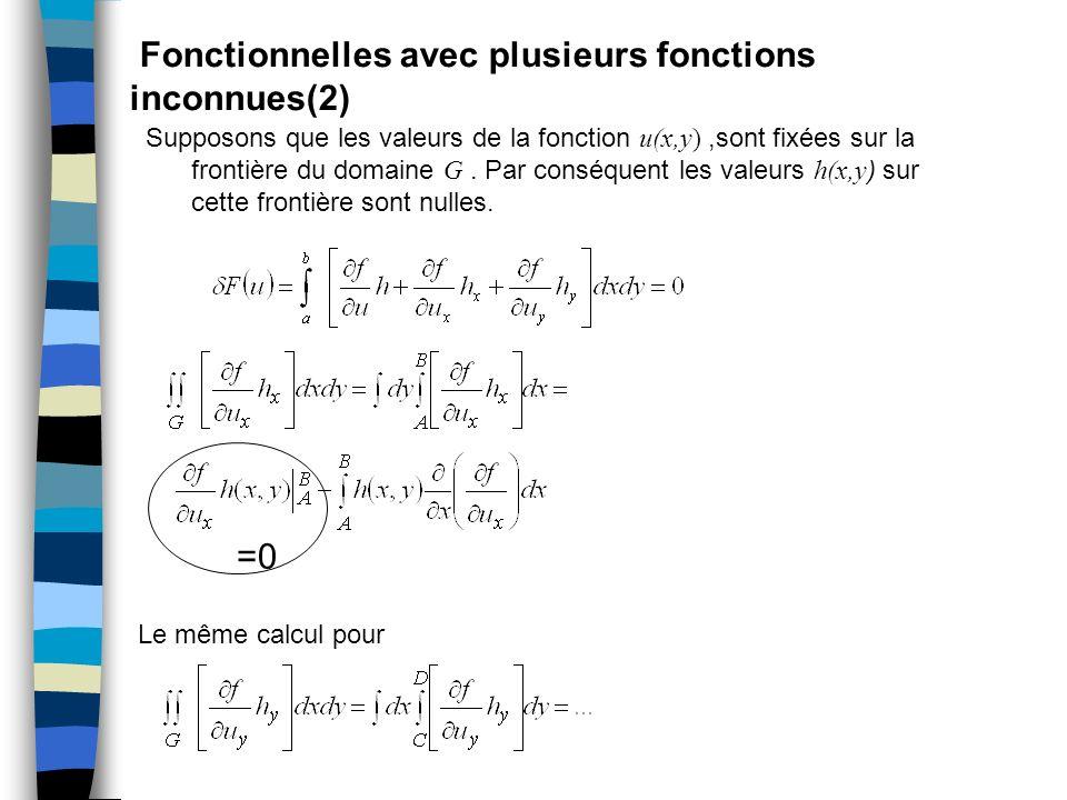 Fonctionnelles avec plusieurs fonctions inconnues(2)