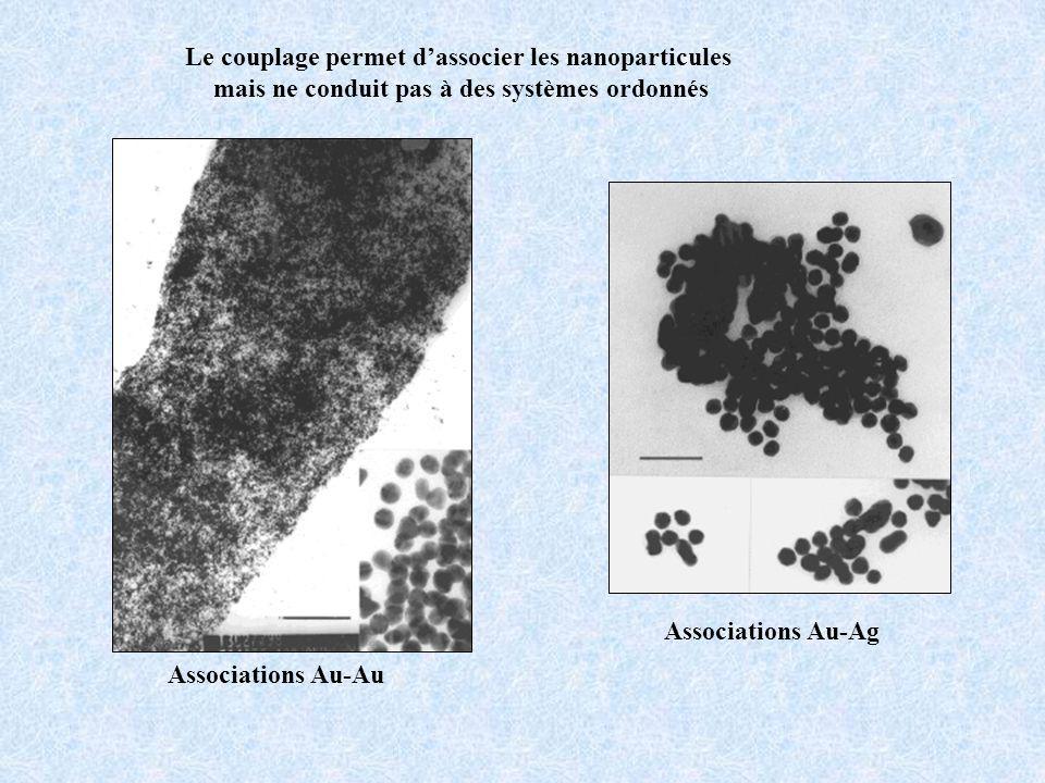 Le couplage permet d'associer les nanoparticules
