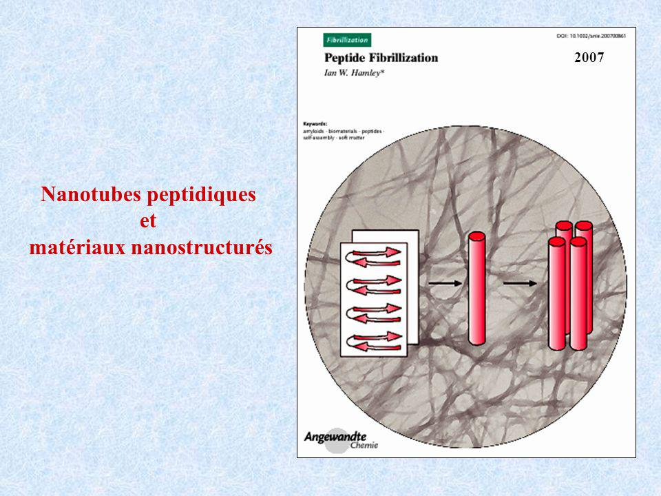 Nanotubes peptidiques matériaux nanostructurés
