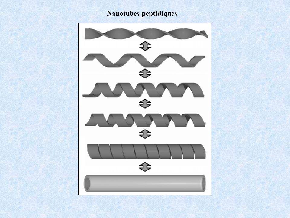 Nanotubes peptidiques