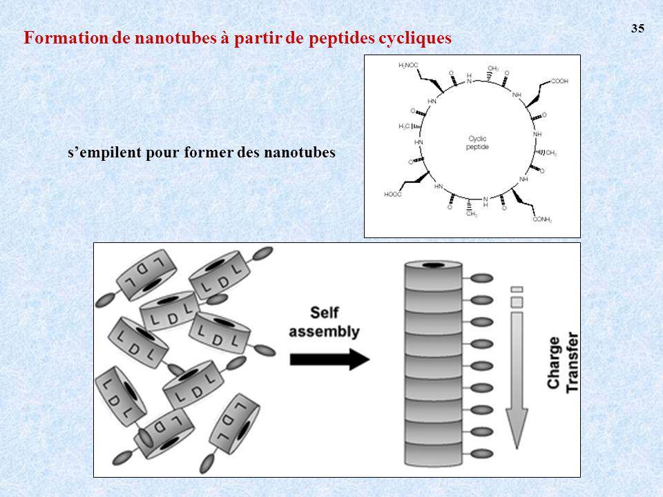 Formation de nanotubes à partir de peptides cycliques