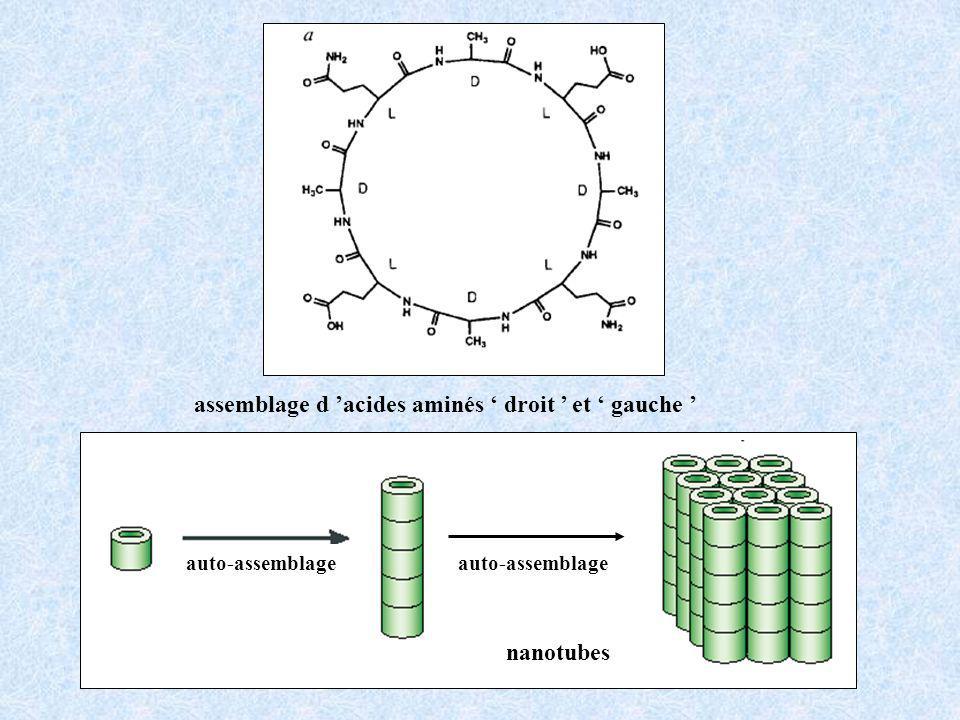assemblage d 'acides aminés ' droit ' et ' gauche '